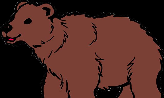 urs, ursul, fabula ateului, ateu